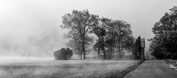 rural morning  - monochrome, blackandwhite - docdenny | ello