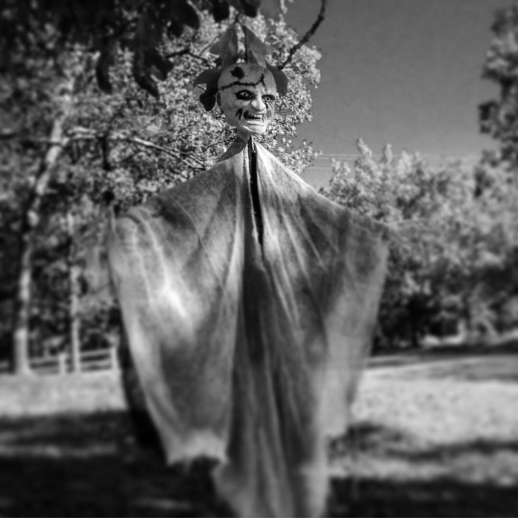 Halloween - anotherneglectedhobby | ello