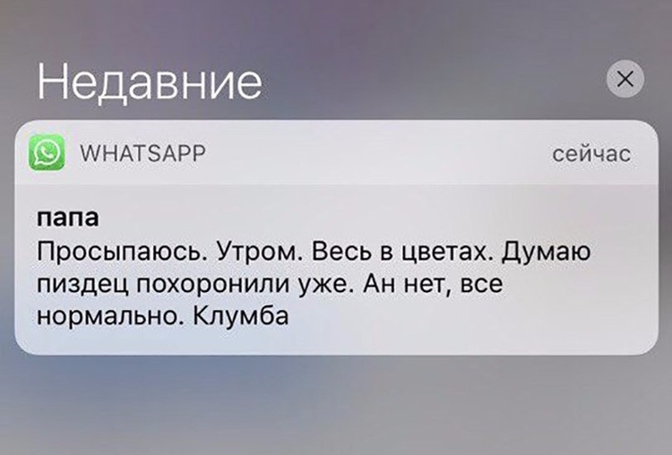 vanello57rus Post 11 Oct 2017 06:58:47 UTC | ello