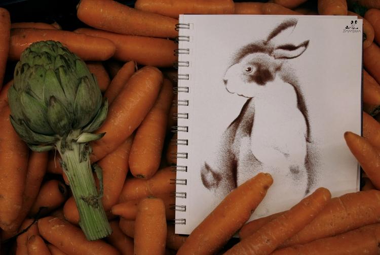 SAND travel BOOK. rabbit destro - barajolka   ello