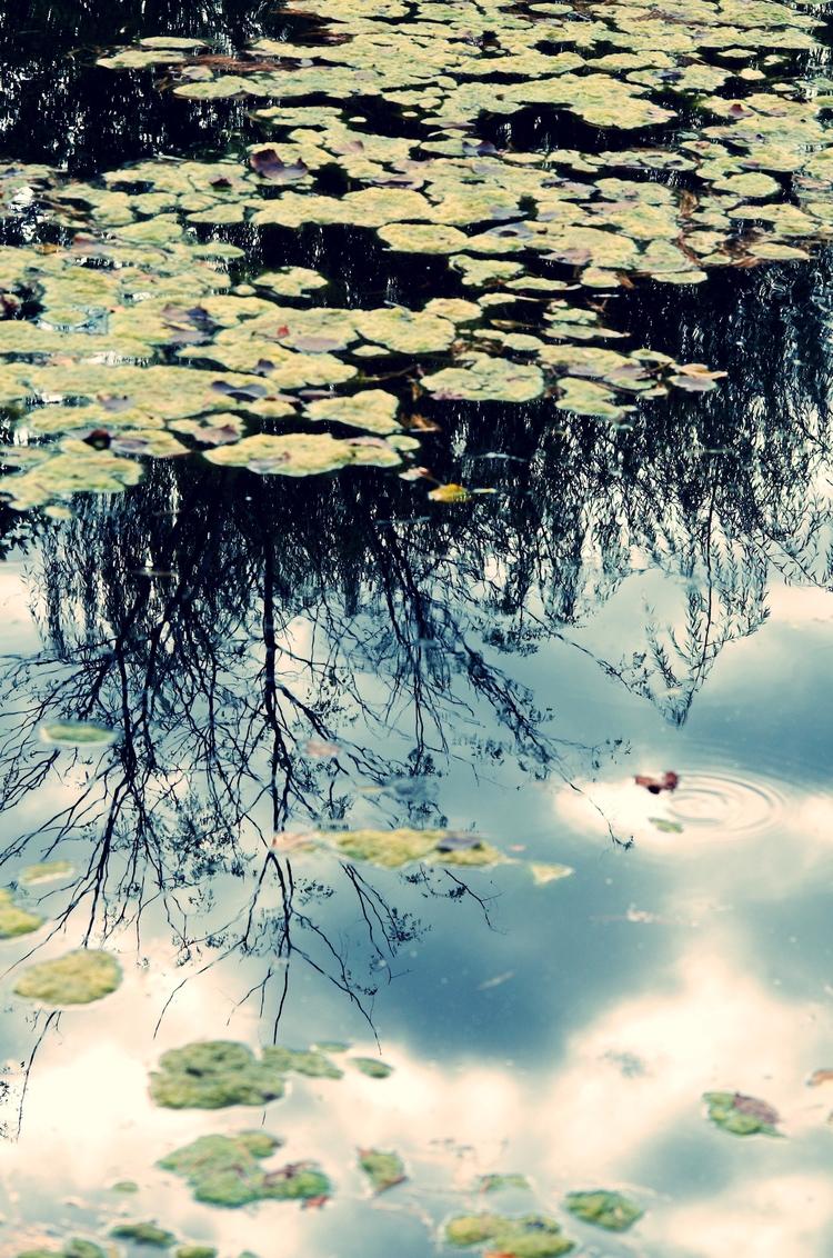 Reflections - reflections, nature - chetkresiak | ello