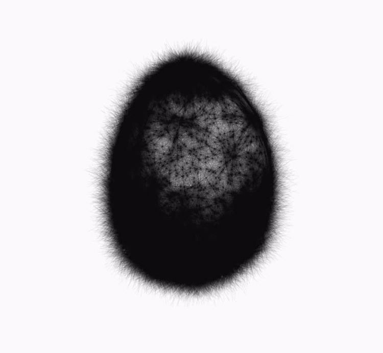 Beginning - black, egg - siguni | ello