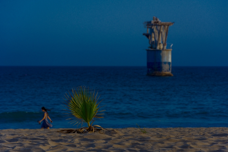 Lone.  - girl, sea, beach, clouds - dalwenphotography | ello