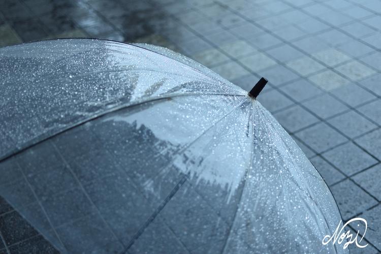 ELLO rainy day - nojis | ello