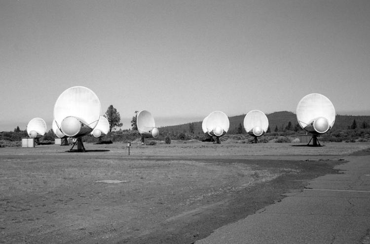 Spacey Ilford Delta 100 Minolta - biosfear | ello