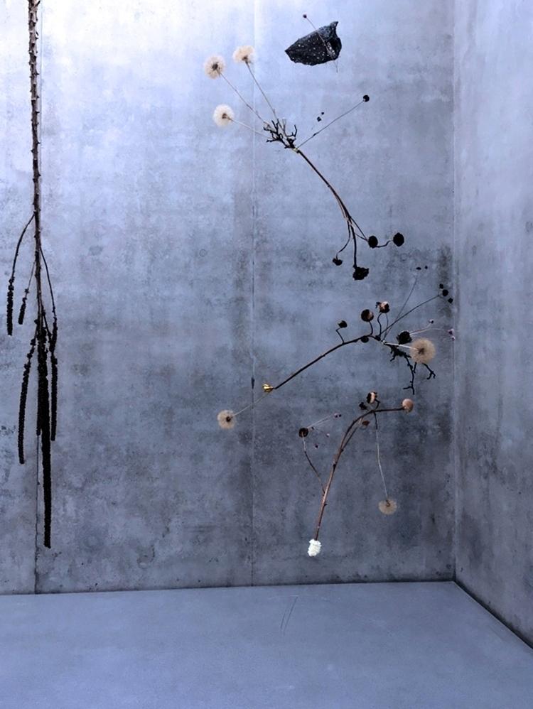 Architect/Building: Peter Zumth - fidalgo_lacrau | ello