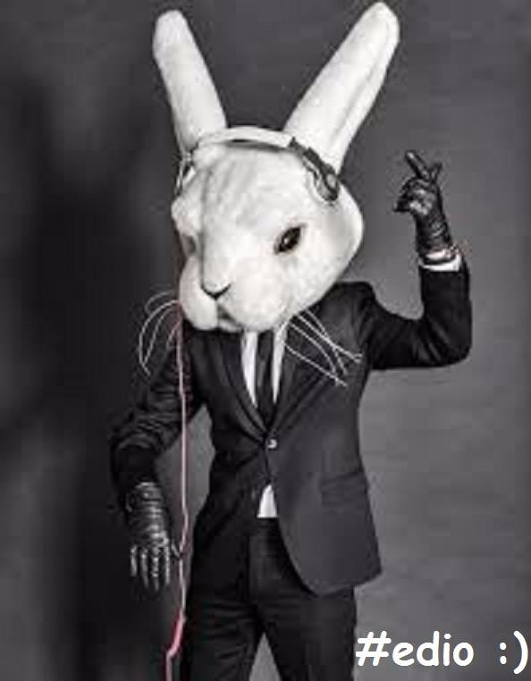 follow white rabbit!, https://e - edio1 | ello