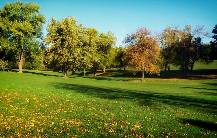 Kent  - Landscape, Planning, Development - davidharrisofficial | ello