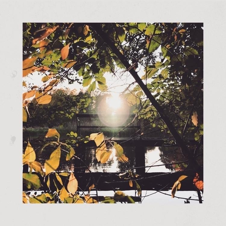 Light bubble - light, nature, sunset - yogiwod | ello