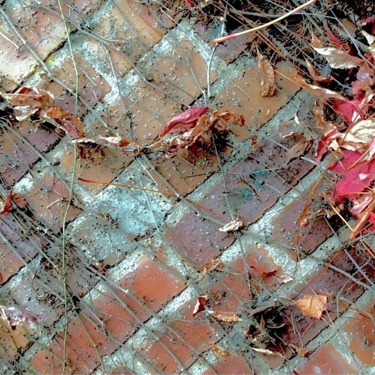 brick fall. sunless, standard B - greyswan   ello