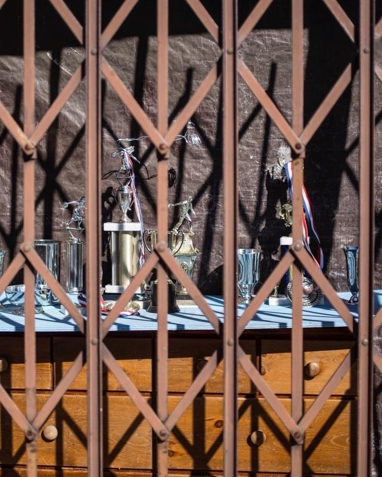 August, sun high trophies bars - talyo | ello