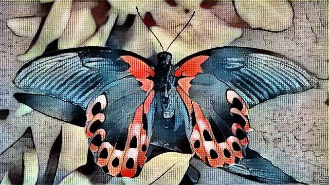 Butterflies Morphing. Page: fil - drakre52   ello