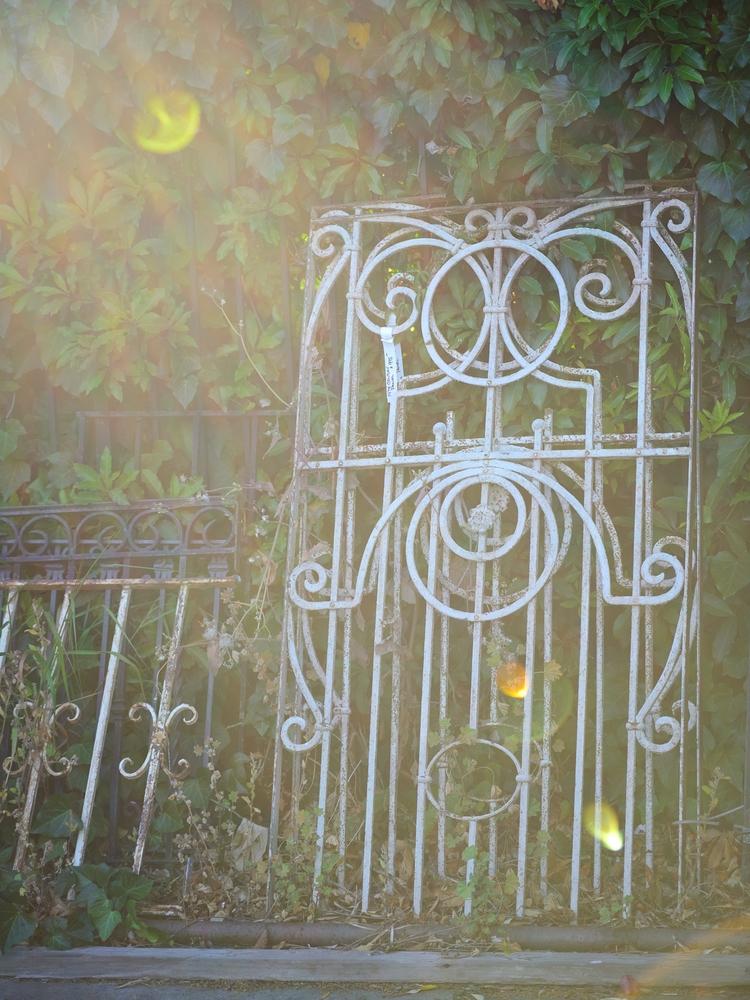 Garden gate - marcbriggs | ello