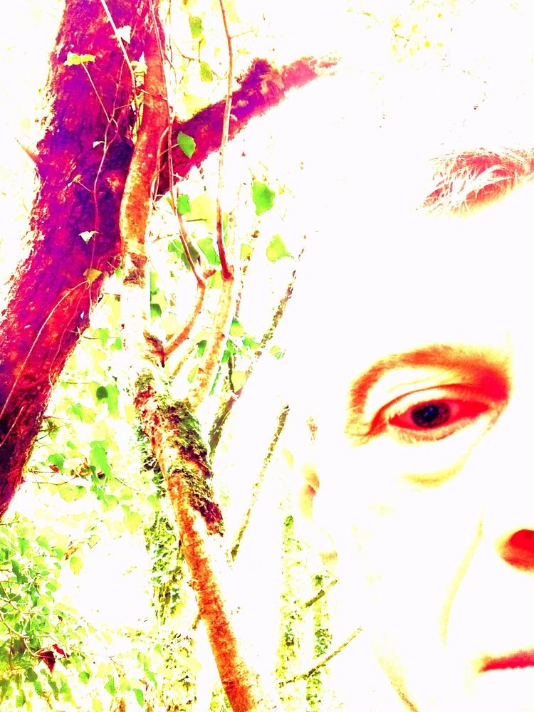 FOREST - artphotography, artpoetry - johnhopper | ello
