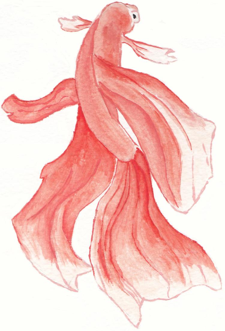 Goldfish Watercolour - nibenhu | ello