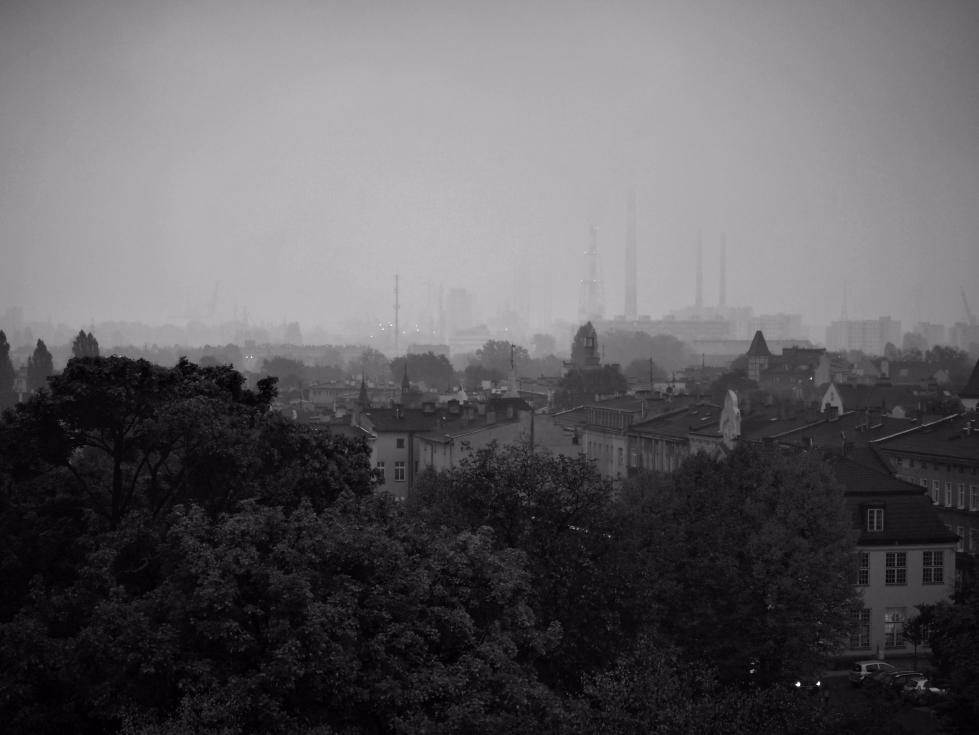 Foggy days - bw, blackandwhite, photography - silvy-s   ello