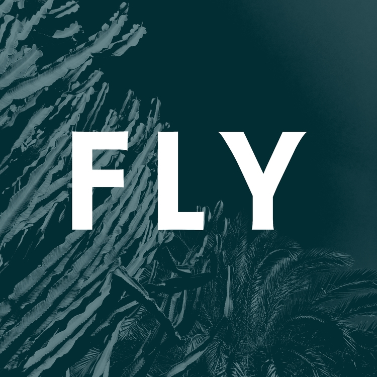 Mondays, fly - postcard, design - agzed | ello
