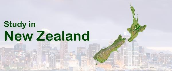 Planning study Zealand? Consult - emsoverseas | ello