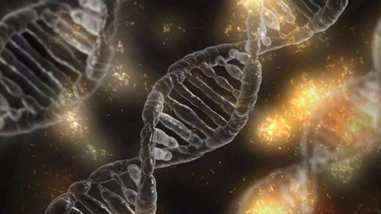 Científicos refutan aceptada hi - codigooculto | ello