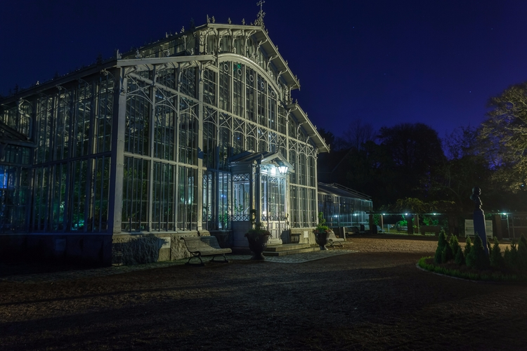Winter Garden - photography, night - anttitassberg | ello