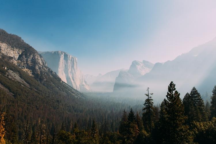 Yosemite. Photo: Laura Austin - photography - lauraaustin   ello