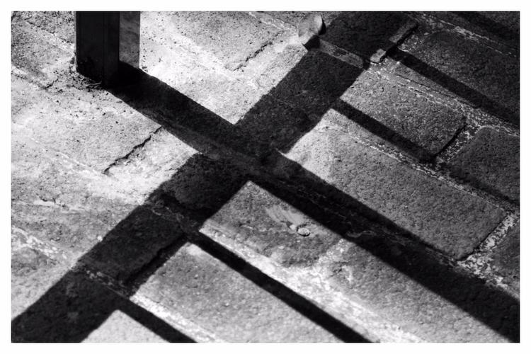 shadows nature' 1/12 - healbyphoto | ello