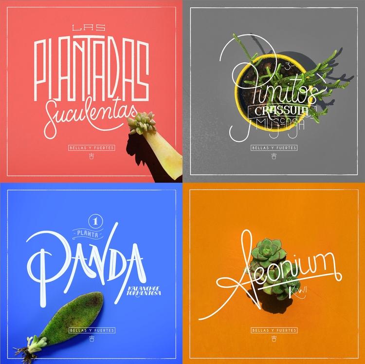Create - lettering, design, typography - federicofigueroa | ello