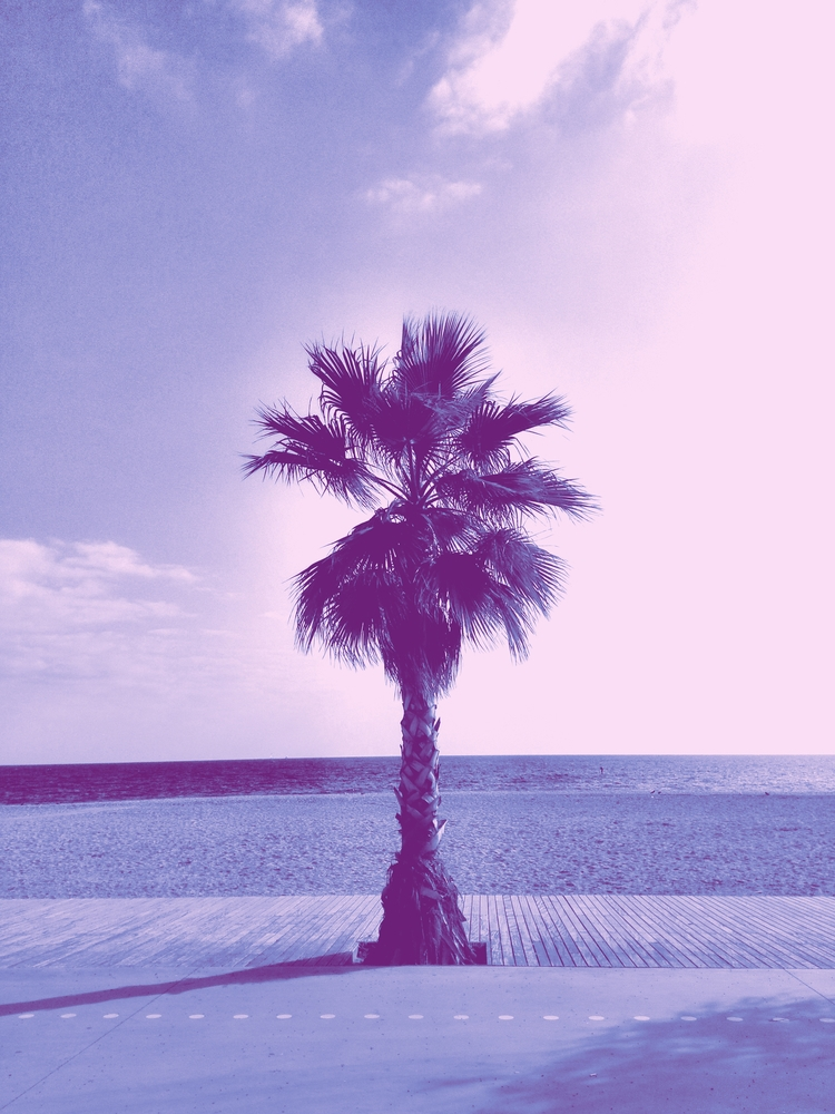 badalona, palm - this_game_has_no_name | ello