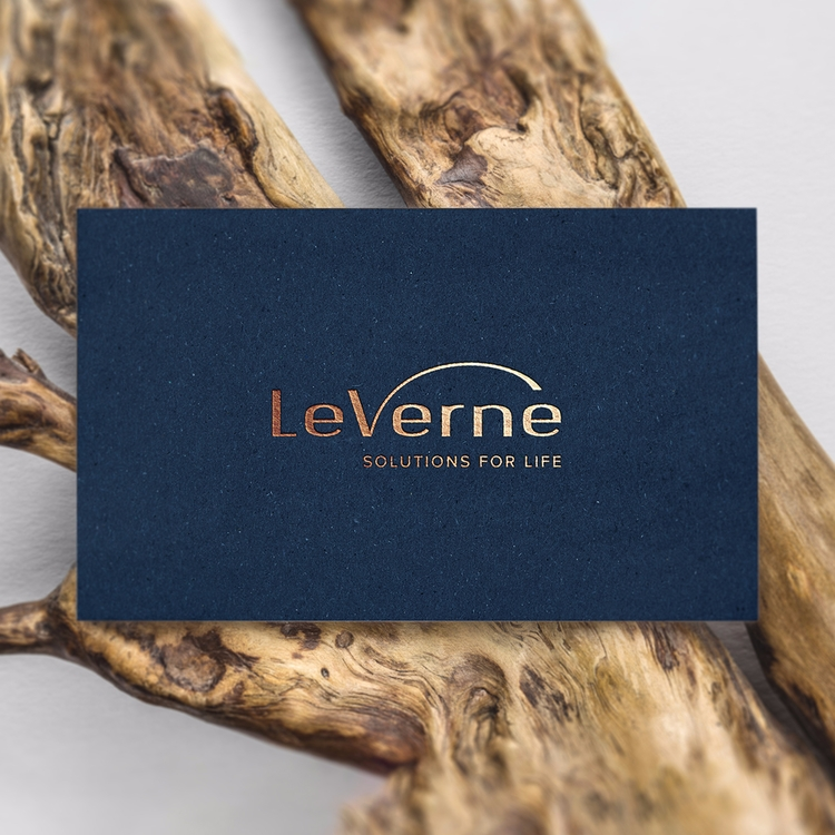 LeVerne. Part identity design - typography - nikolastosic_ | ello