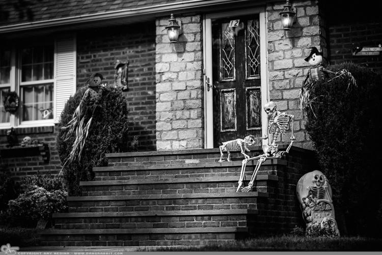 Happy Halloween guy dog waiting - dangrabbit-photography | ello