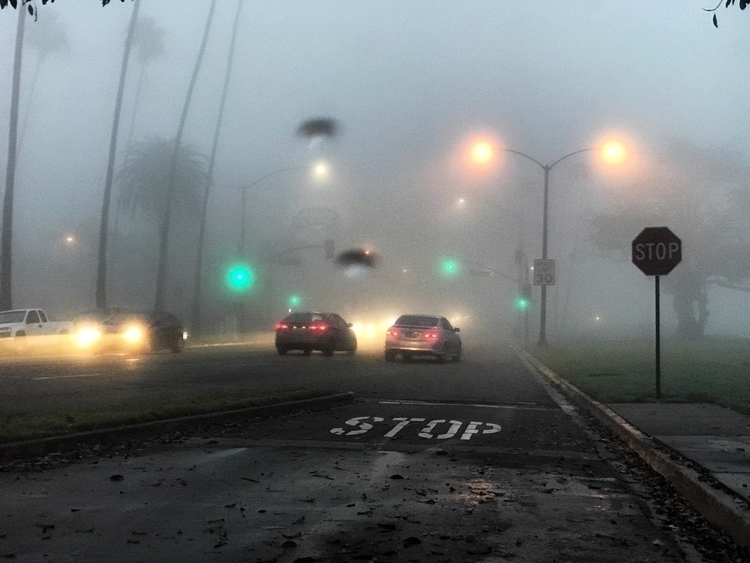 Long Beach, CA foggy morning - ref0rmated | ello