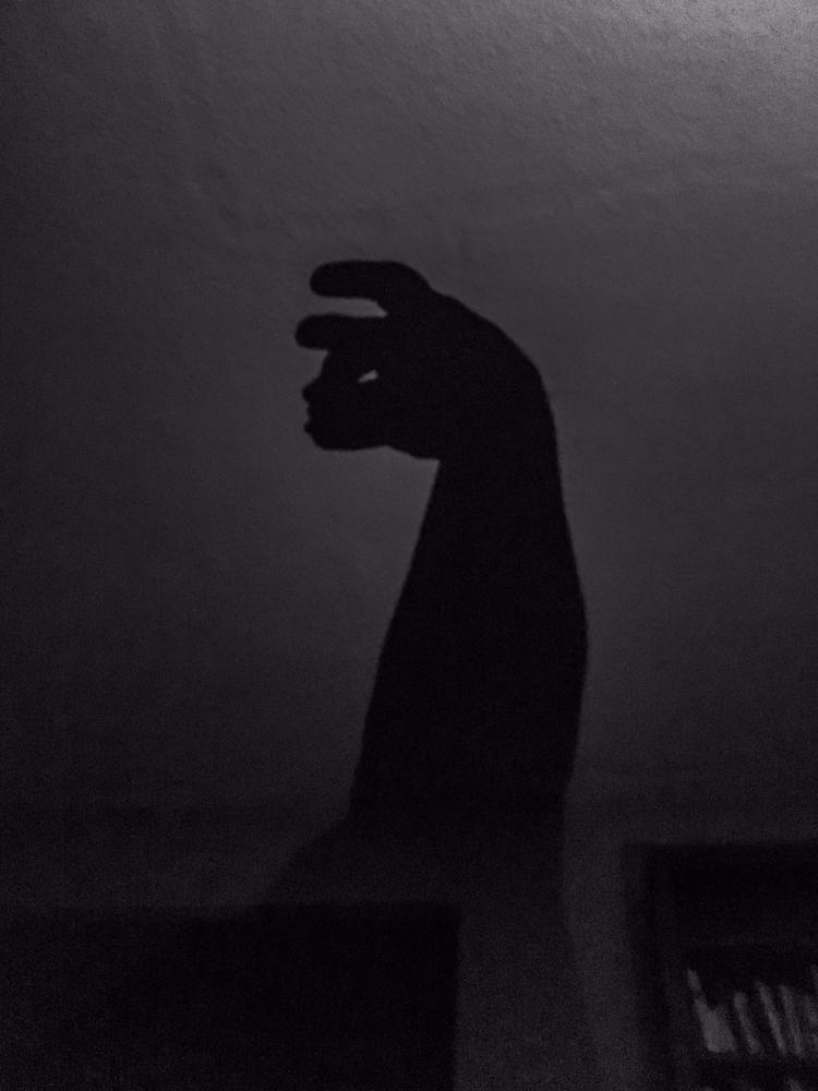 Shadow Monsters wake middle nig - davidseibold | ello