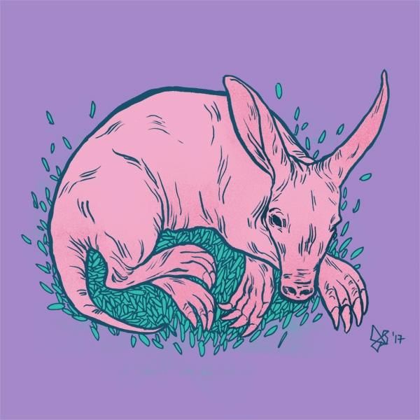 day 29 Aardvark, amazing animal - dariagolab | ello