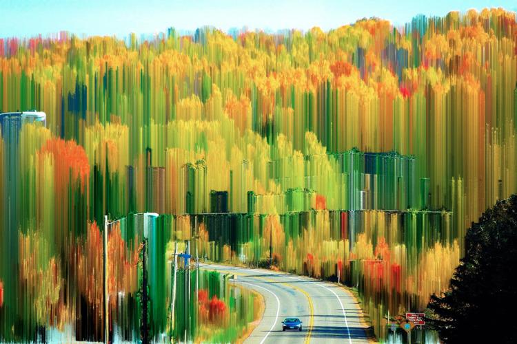 leaf season - foliage, glitch, pixelsort - jazer | ello