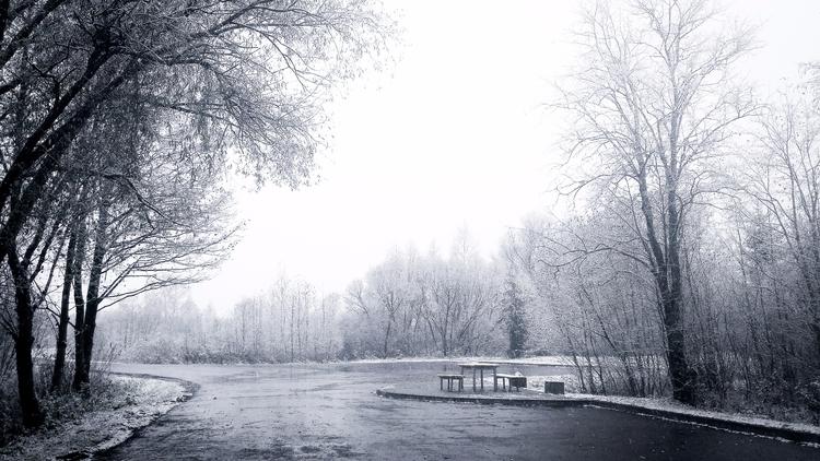 lithuania, 2017, autumn, snow - beheroght | ello