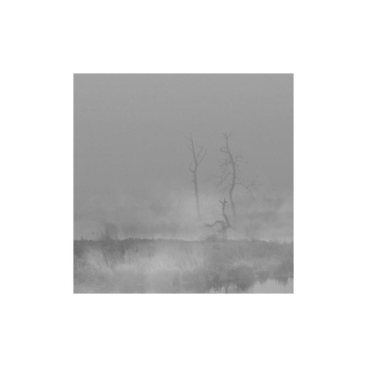 monique2211 Post 05 Nov 2017 12:33:15 UTC   ello