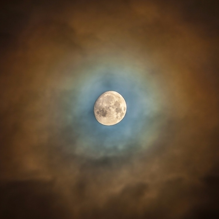 Halloween moon - photography, night - anttitassberg | ello