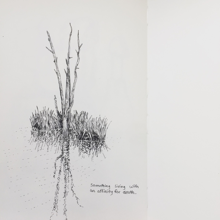 emphasis matters - art, drawing - shiming | ello
