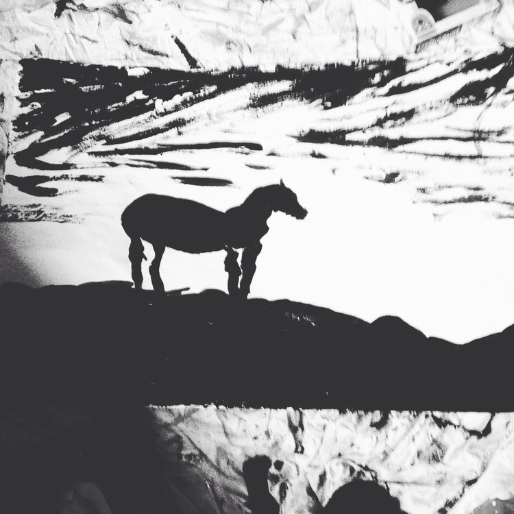 Horse Sunset Black White - loveartwonders | ello