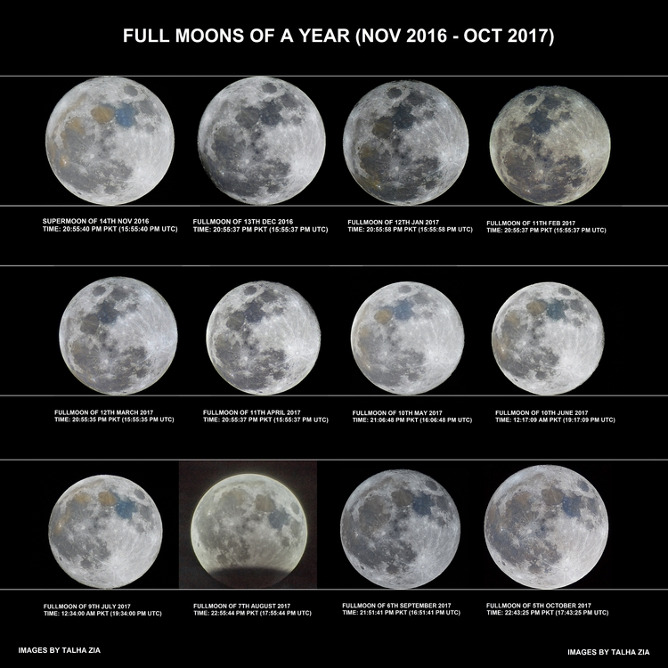 Year Full Moons - moon, lunation - valosalo | ello