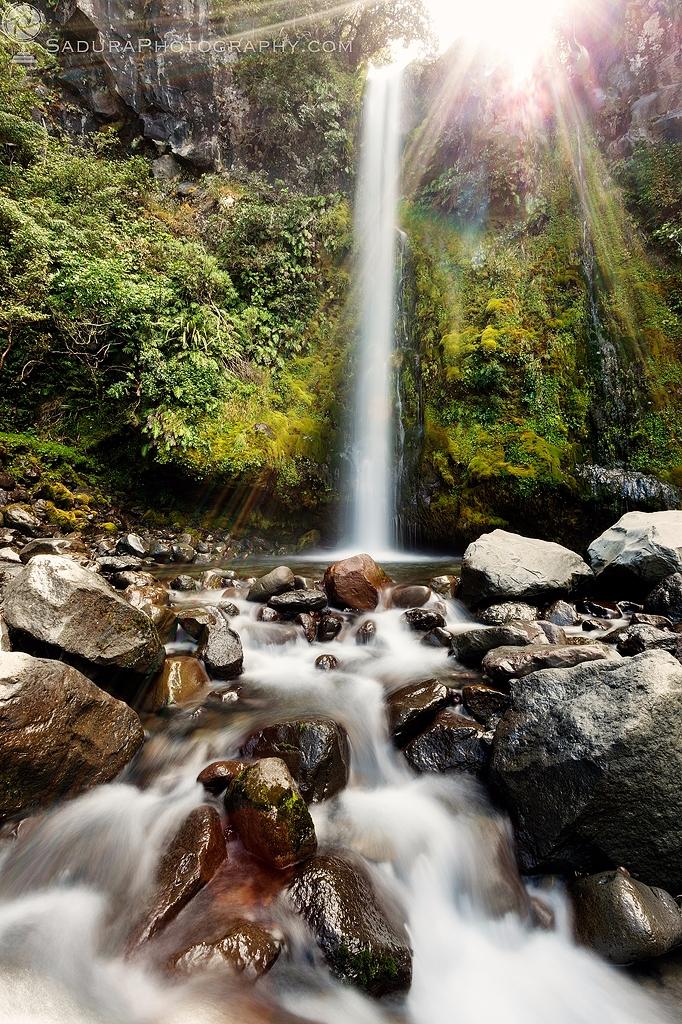Dawson Falls Egmont National Pa - hsphotos | ello