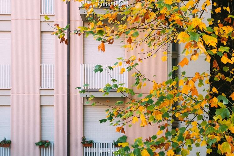 Lecco City, autumn Fujifilm X10 - giovalife | ello