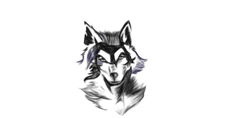 working wolf design - joshuaracine | ello