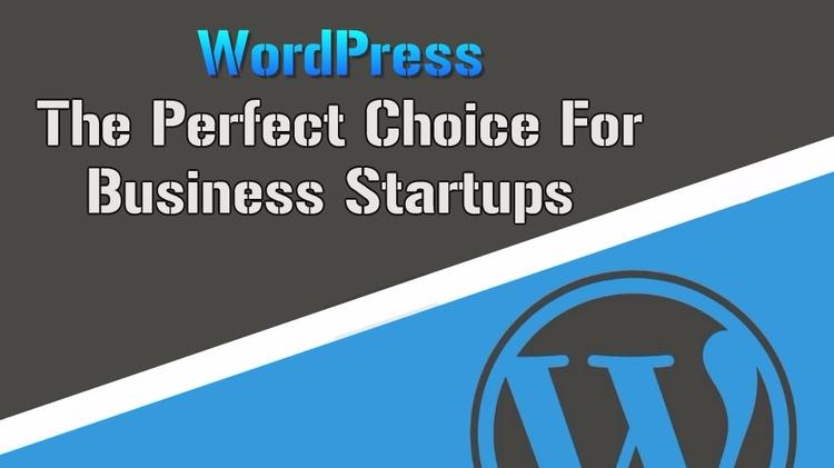 WordPress Perfect Choice Busine - elsnerinc | ello
