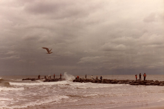 People fishing jetty Cape Jerse - adverteria | ello