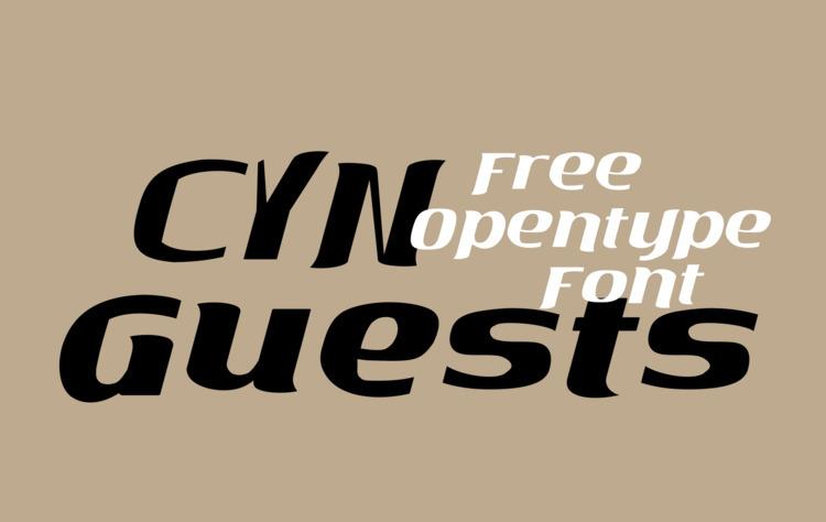 CYN Guests Ditone Display Serif - petro5va5iadi5   ello