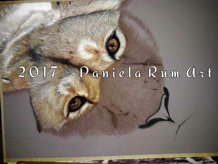 wip 50x70 soft pastel - draw #drawing - daniela_rum | ello