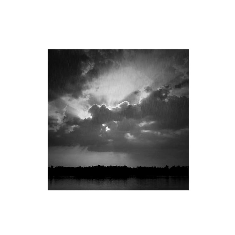 monique2211 Post 10 Nov 2017 17:09:27 UTC | ello