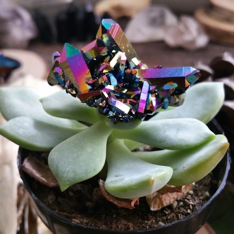 acquire gorgeous titanium aura  - elderandsage | ello