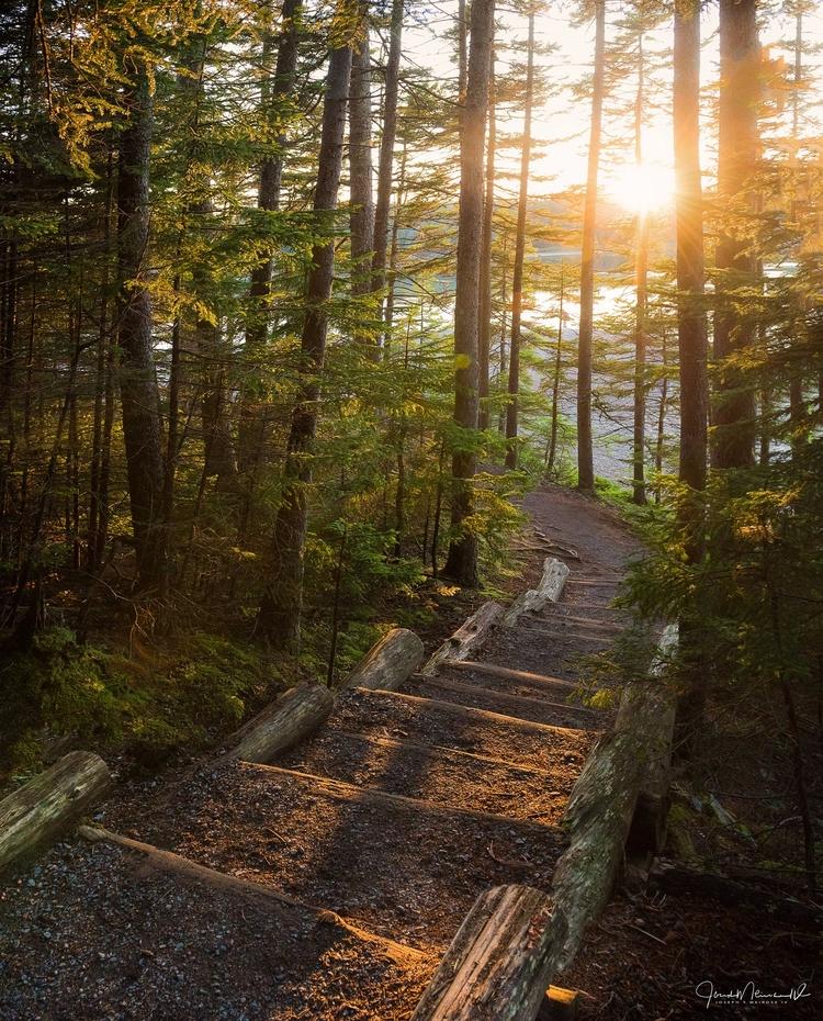 rushing sunset spot running tim - joemeirose | ello